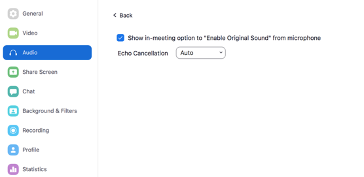 Zoom audio setting